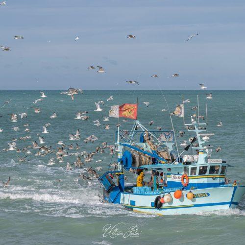 Retour de pêche sous escorte