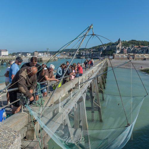 Pêche au carrelet sur l'estacade