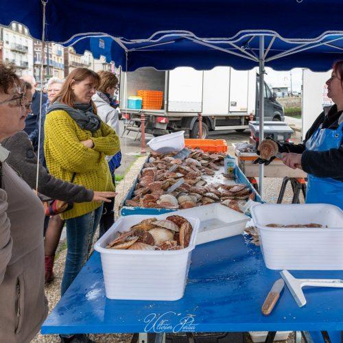 Vente de coquilles saint-jacques sur le quai